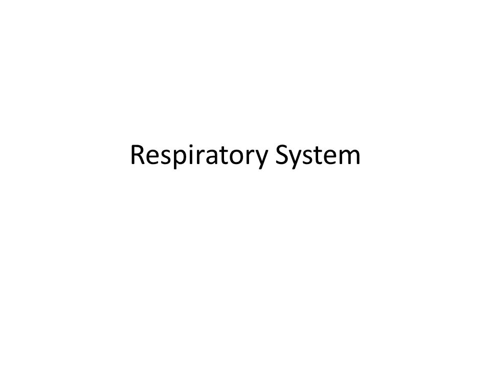 Question: How are particles of foreign matter expelled from the respiratory system?