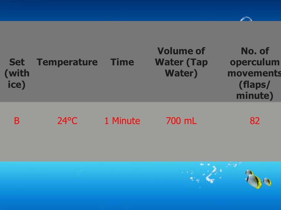 Set (with ice) TemperatureTime Volume of Water (Tap Water) No. of operculum movements (flaps/ minute) B24°C1 Minute700 mL82