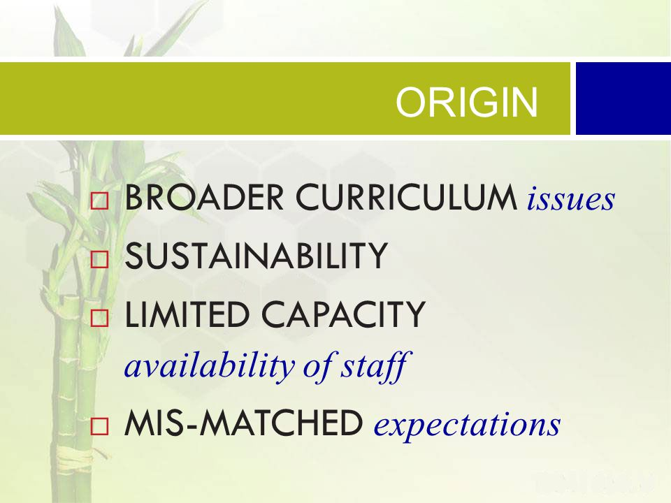  BROADER CURRICULUM issues  SUSTAINABILITY  LIMITED CAPACITY availability of staff  MIS-MATCHED expectations