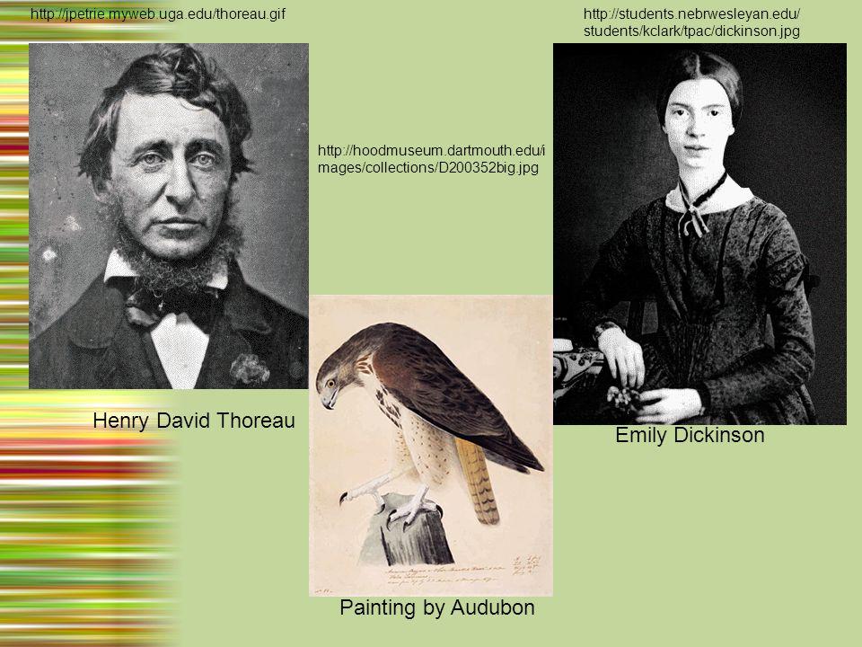 Henry David Thoreau http://jpetrie.myweb.uga.edu/thoreau.gif Emily Dickinson http://students.nebrwesleyan.edu/ students/kclark/tpac/dickinson.jpg http://hoodmuseum.dartmouth.edu/i mages/collections/D200352big.jpg Painting by Audubon