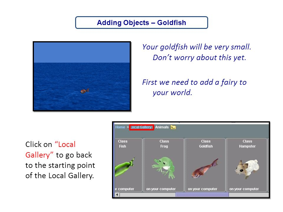 """Your goldfish will be very small. Don't worry about this yet. First we need to add a fairy to your world. Click on """"Local Gallery"""" to go back to the s"""
