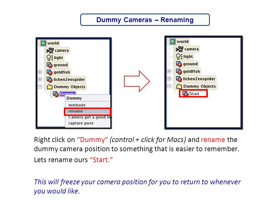 """Right click on """"Dummy"""" (control + click for Macs) and rename the dummy camera position to something that is easier to remember. Lets rename ours """"Star"""