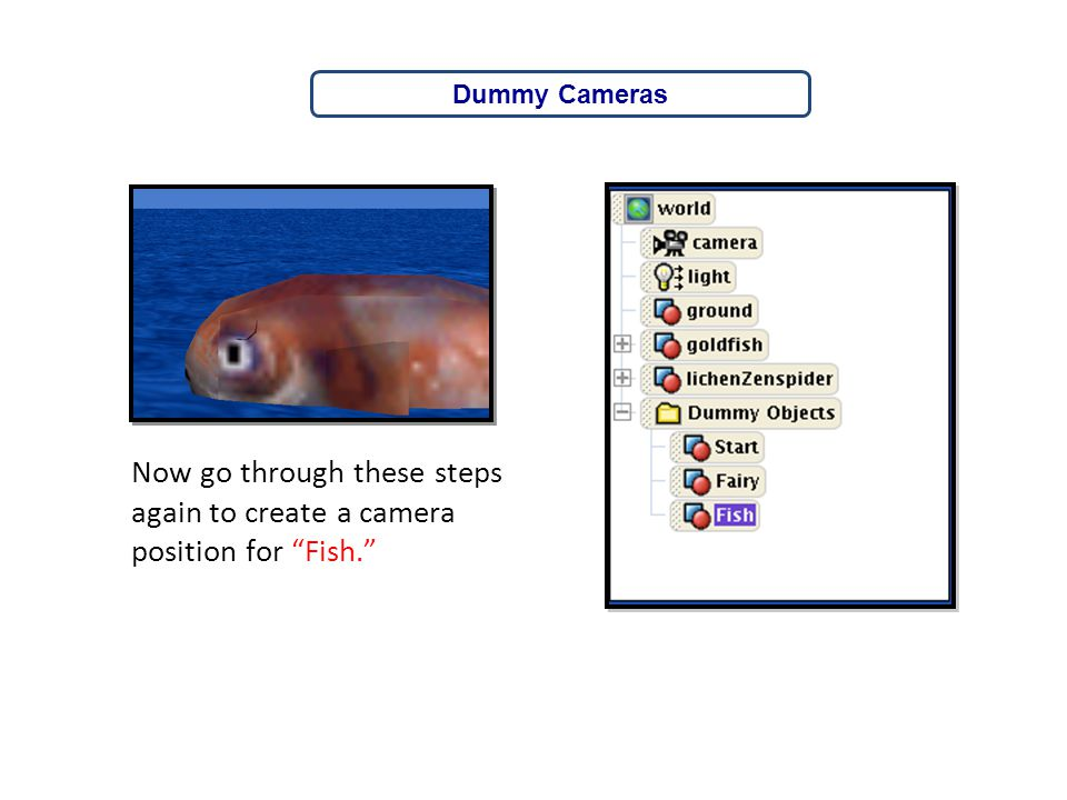 """Now go through these steps again to create a camera position for """"Fish."""" Dummy Cameras"""