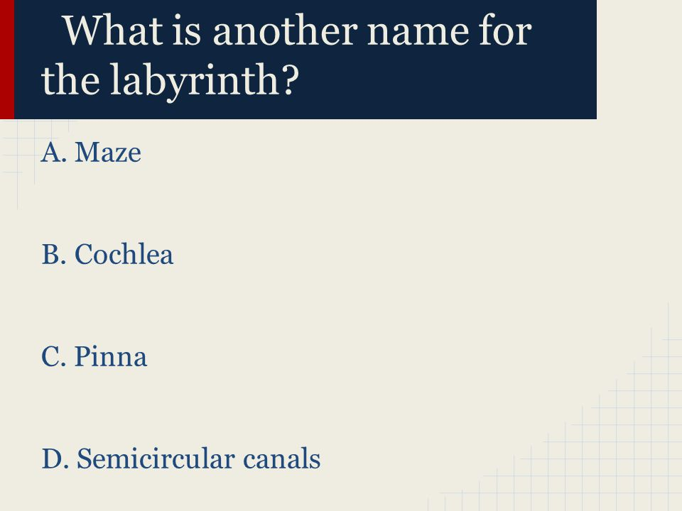 What is another name for the labyrinth? A. Maze B. Cochlea C. Pinna D. Semicircular canals