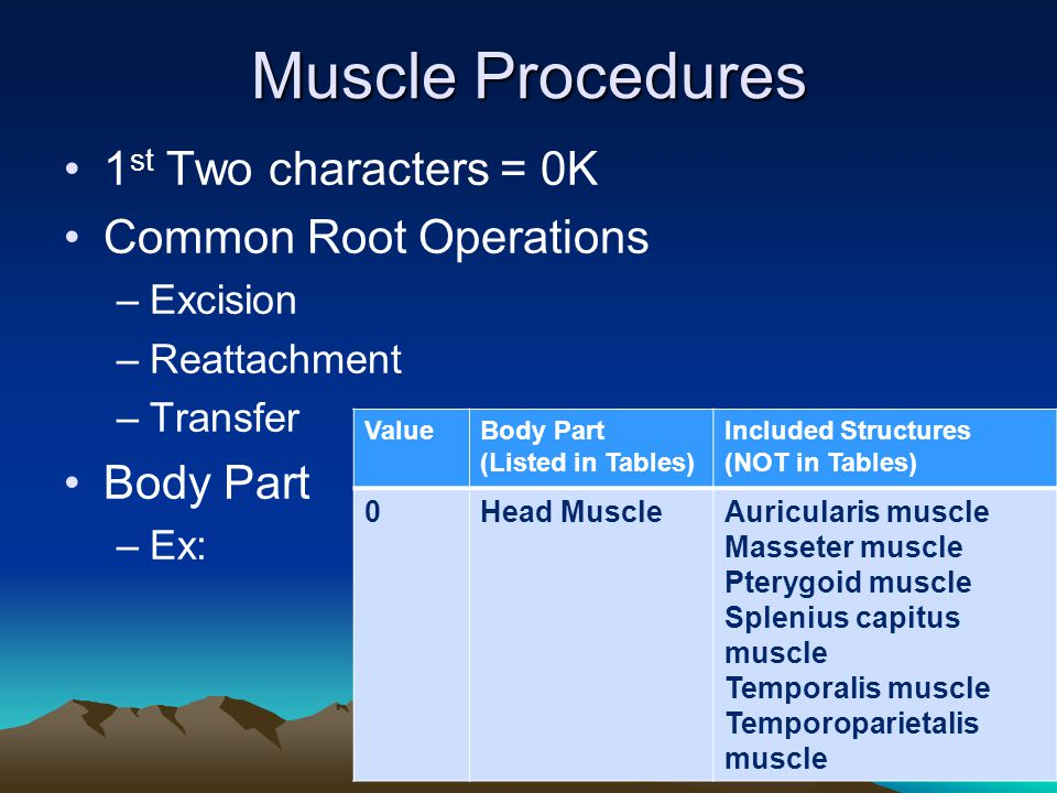 Muscle Procedures 1 st Two characters = 0K Common Root Operations –Excision –Reattachment –Transfer Body Part –Ex: ValueBody Part (Listed in Tables) I