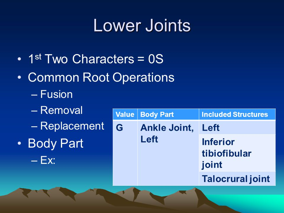 Lower Joints 1 st Two Characters = 0S Common Root Operations –Fusion –Removal –Replacement Body Part –Ex: ValueBody PartIncluded Structures GAnkle Joi