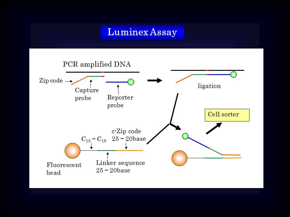 Luminex Assay Fluorescent bead C 15 ~ C 18 Linker sequence 25 ~ 20base c-Zip code 25 ~ 20base PCR amplified DNA Zip code Capture probe Reporter probe ligation Cell sorter