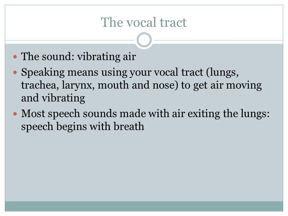 The vocal tract The sound: vibrating air Speaking means using your vocal tract (lungs, trachea, larynx, mouth and nose) to get air moving and vibratin