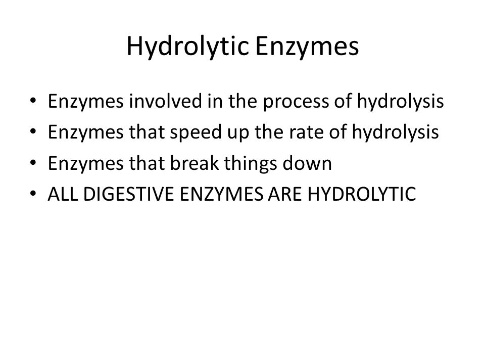 Hydrolytic Enzymes Enzymes involved in the process of hydrolysis Enzymes that speed up the rate of hydrolysis Enzymes that break things down ALL DIGES