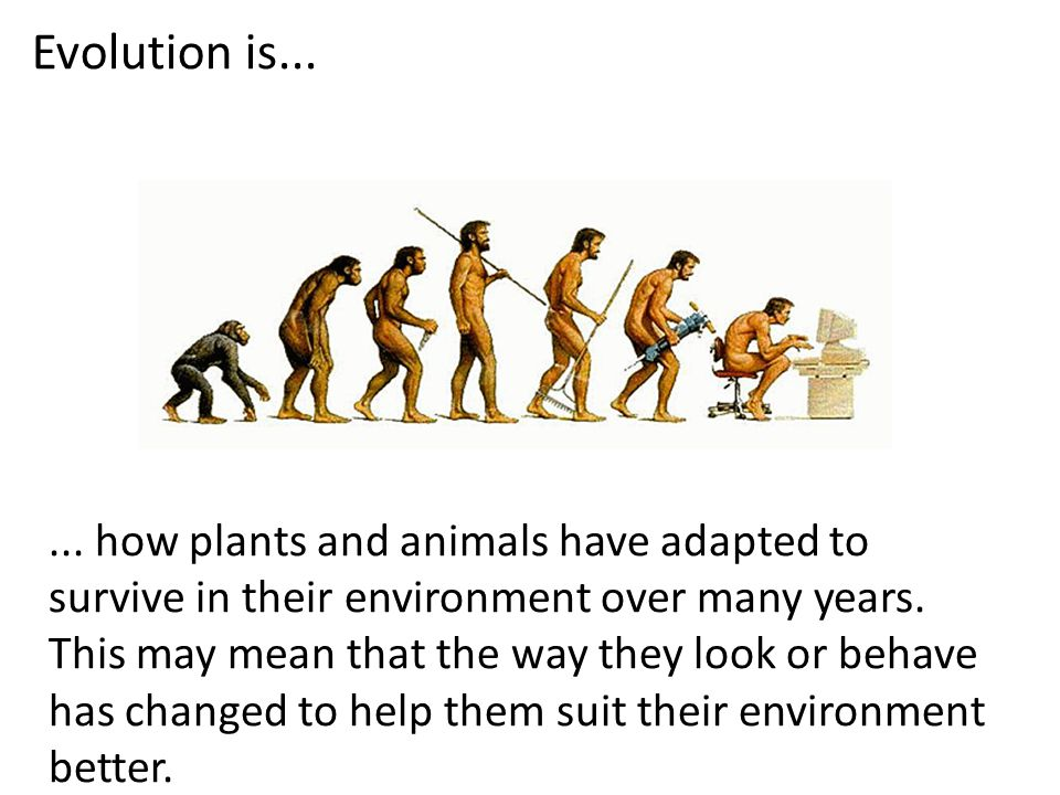 Evolution is......