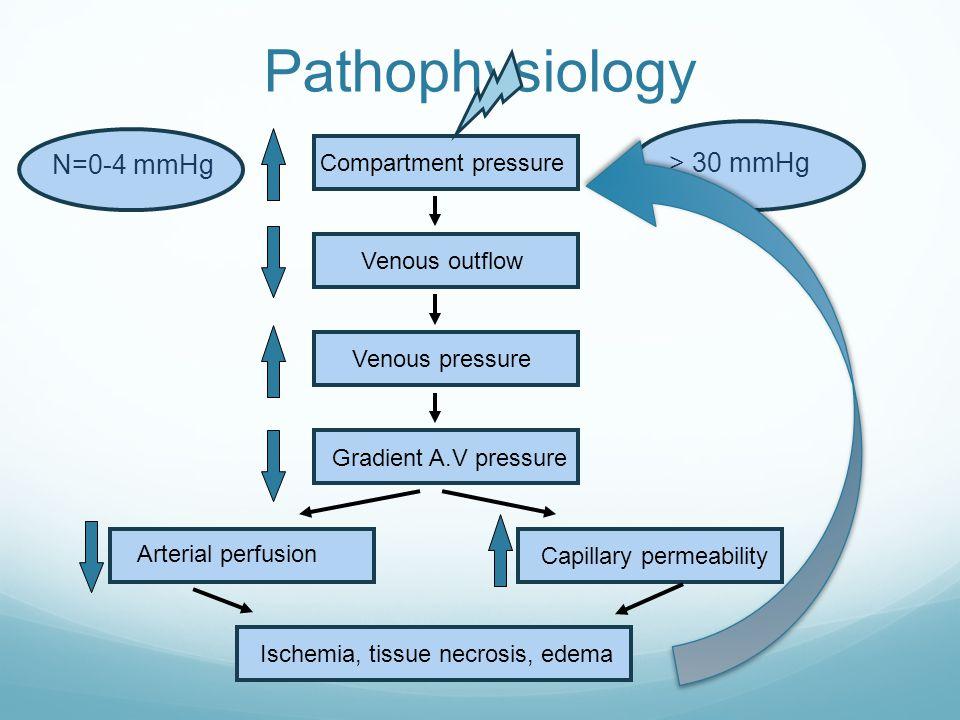 Pathophysiology Compartment pressure Venous outflow Venous pressure Gradient A.V pressure Arterial perfusion Ischemia, tissue necrosis, edema Capillary permeability N=0-4 mmHg > 30 mmHg