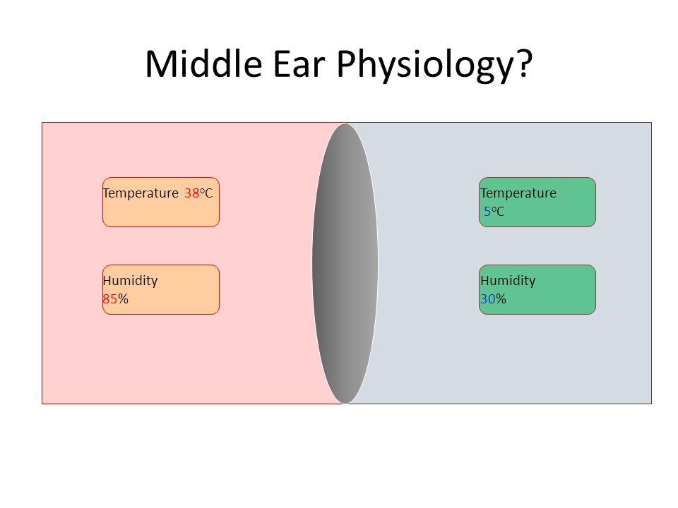 Middle Ear Physiology? Temperature 38 o CTemperature 5 o C Humidity 85% Humidity 30%