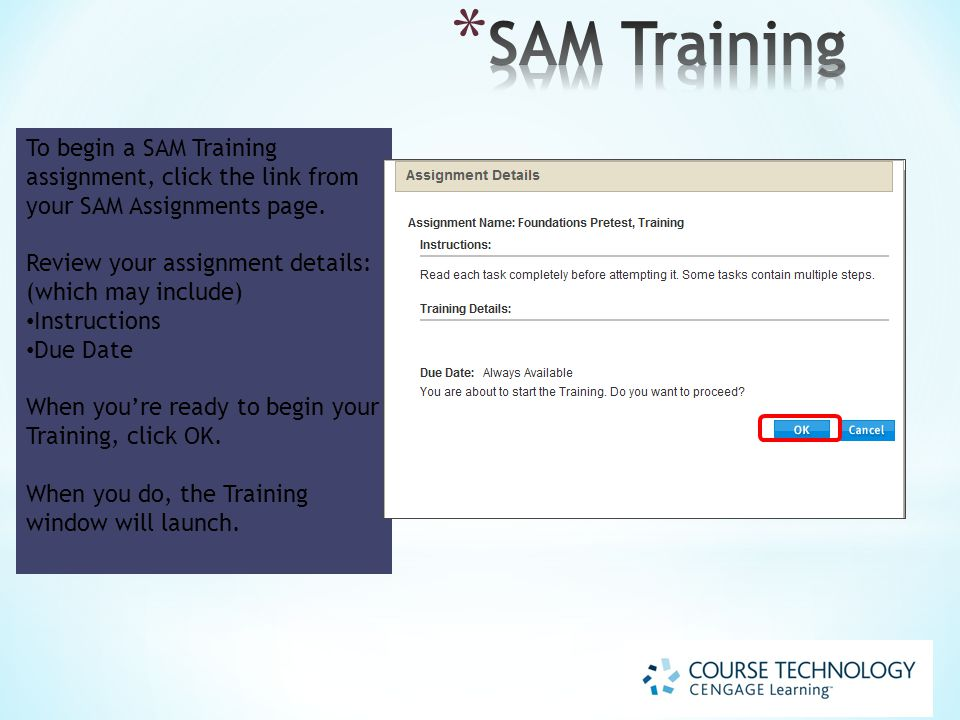 To begin a SAM Training assignment, click the link from your SAM Assignments page.