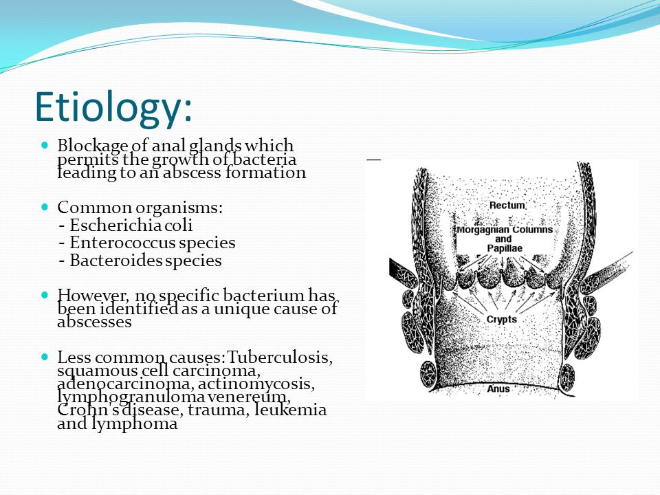 Etiology: Blockage of anal glands which permits the growth of bacteria leading to an abscess formation Common organisms: - Escherichia coli - Enteroco