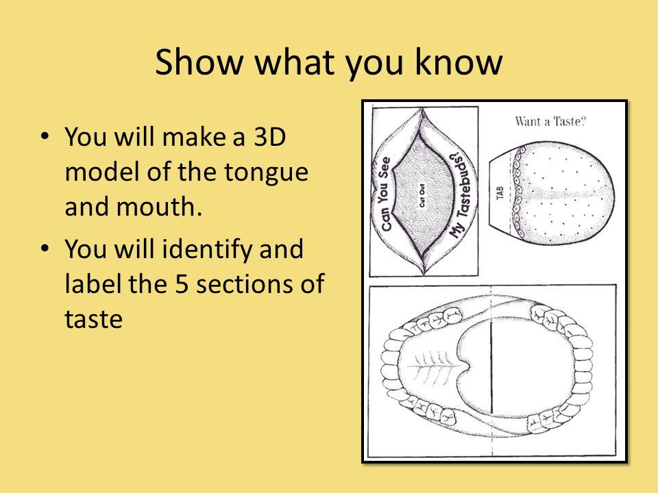 Video Links https://www.youtube.com/watch v=aP_lwhP MWU8 - taste buds https://www.youtube.com/watch v=aP_lwhP MWU8 http://www.makemegenius.com/video_play.p hp id=163&type= - taste buds http://www.makemegenius.com/video_play.p hp id=163&type