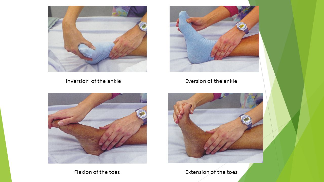 Inversion of the ankleEversion of the ankle Flexion of the toesExtension of the toes