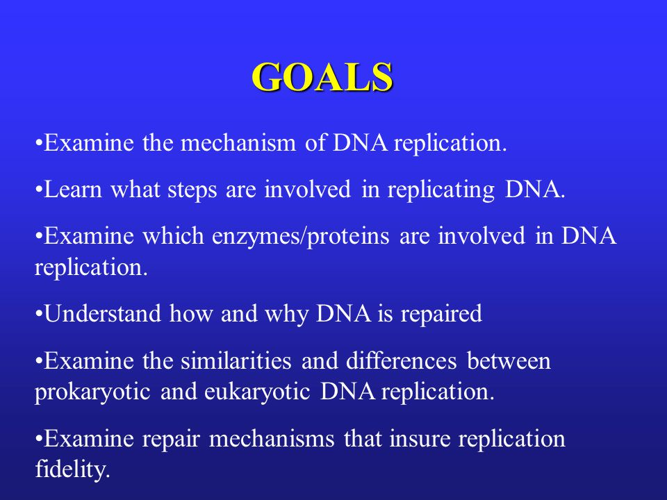 GOALS Examine the mechanism of DNA replication. Learn what steps are involved in replicating DNA. Examine which enzymes/proteins are involved in DNA r