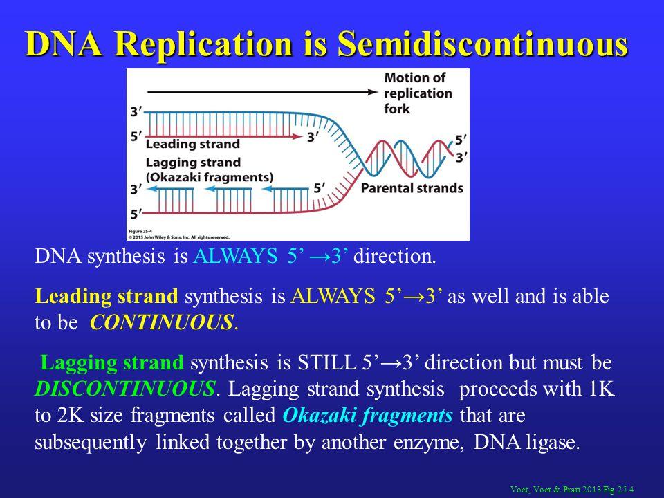 Voet, Voet & Pratt 2013 Fig 25.4 DNA Replication is Semidiscontinuous DNA synthesis is ALWAYS 5' →3' direction.