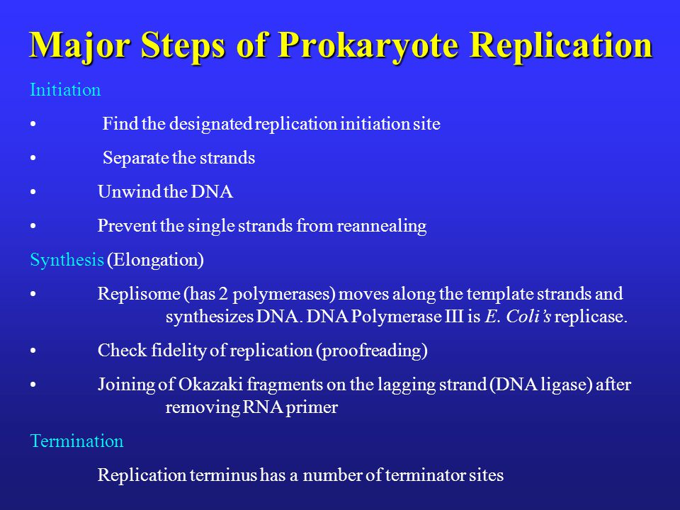Major Steps of Prokaryote Replication Initiation Find the designated replication initiation site Separate the strands Unwind the DNA Prevent the singl