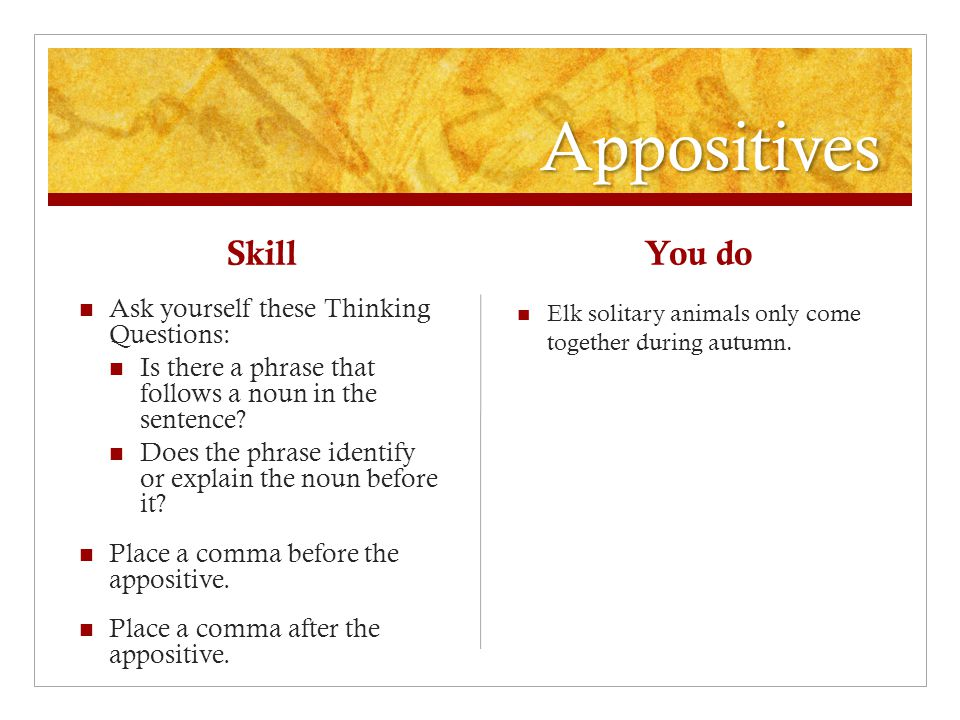 Appositives Skill Ask yourself these Thinking Questions: Is there a phrase that follows a noun in the sentence.