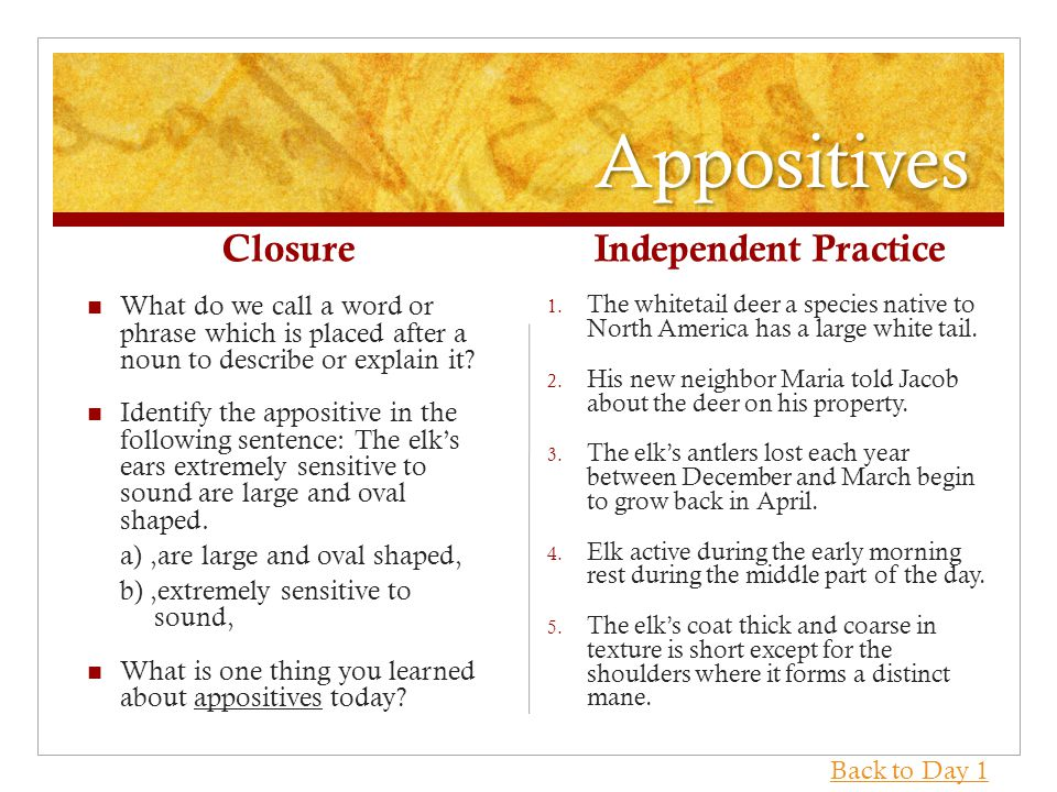 Appositives Closure What do we call a word or phrase which is placed after a noun to describe or explain it.