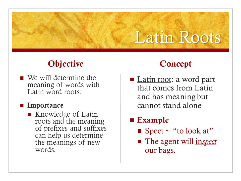 Latin Roots Objective We will determine the meaning of words with Latin word roots.