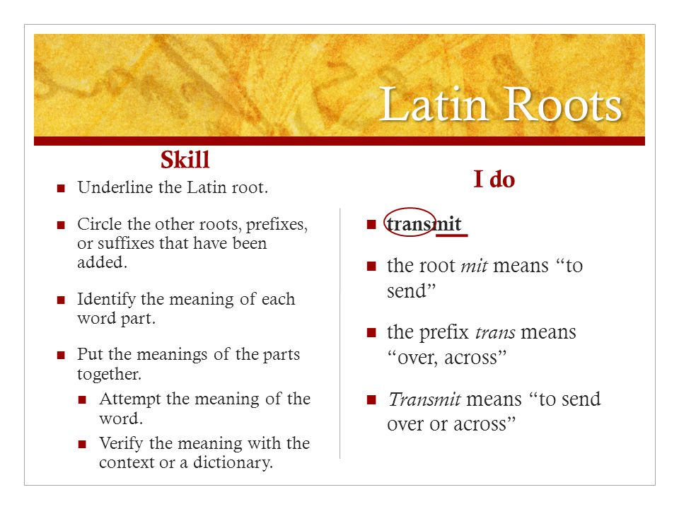 Latin Roots Skill Underline the Latin root.