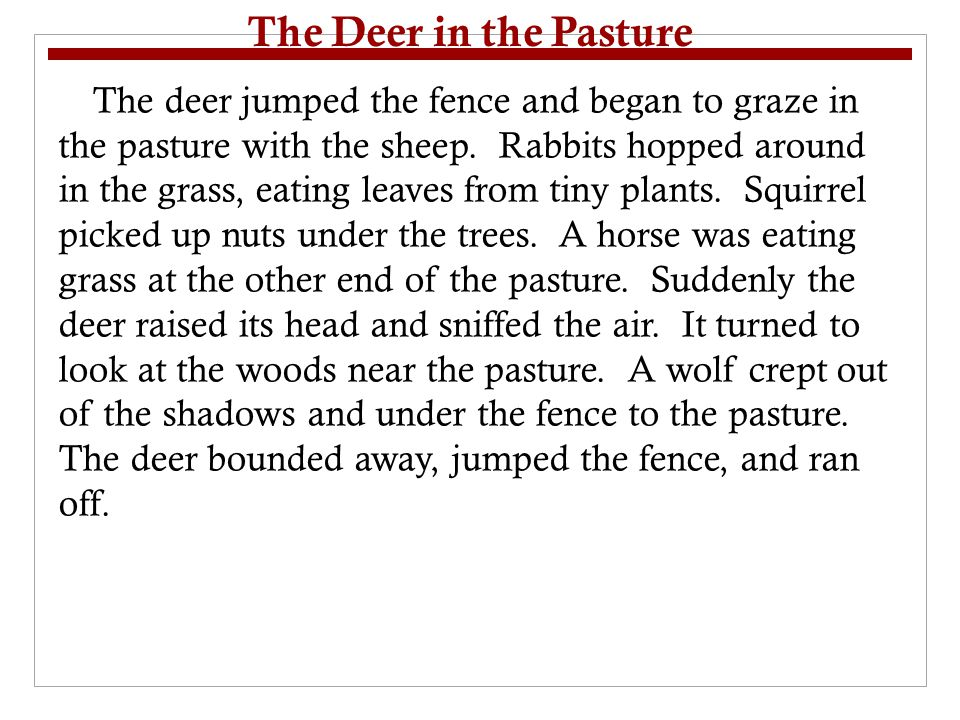 T-Map Conclusions/Generalizations DetailsConclusion or Generalization Deer, sheep, rabbit, squirrel, and horse are eating plants All animals in the pasture at first were plant eaters.