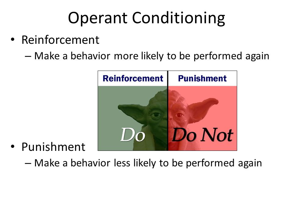 Operant Conditioning Reinforcement – Make a behavior more likely to be performed again Punishment – Make a behavior less likely to be performed again