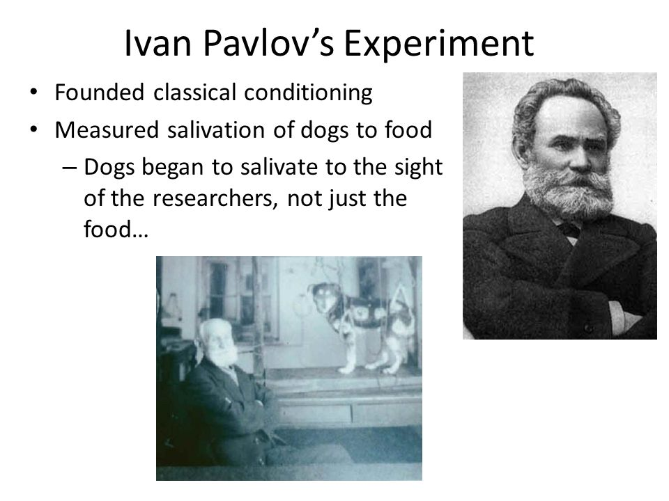Ivan Pavlov's Experiment Founded classical conditioning Measured salivation of dogs to food – Dogs began to salivate to the sight of the researchers, not just the food…