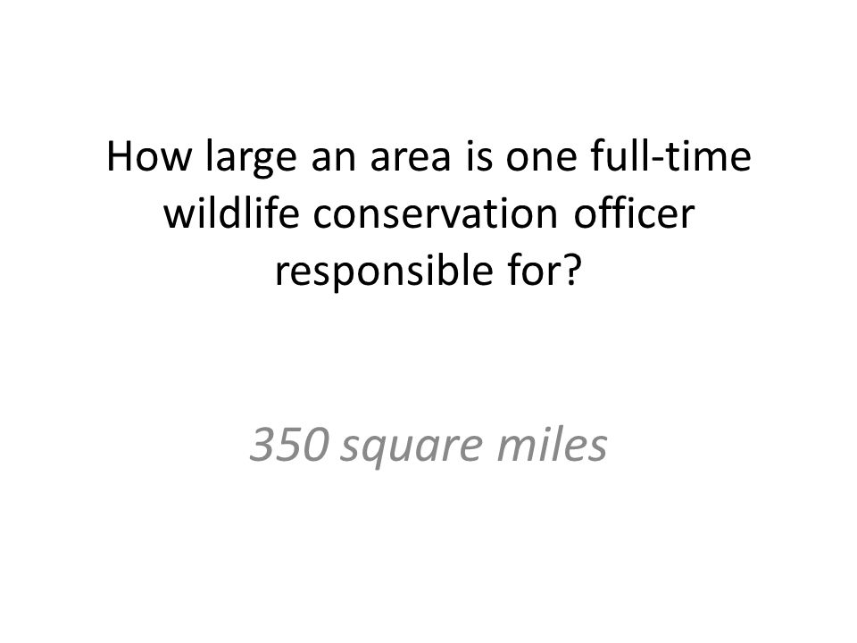 How large an area is one full-time wildlife conservation officer responsible for 350 square miles