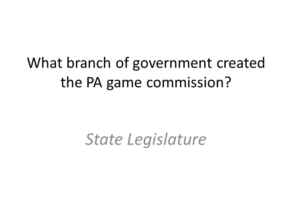 What branch of government created the PA game commission State Legislature