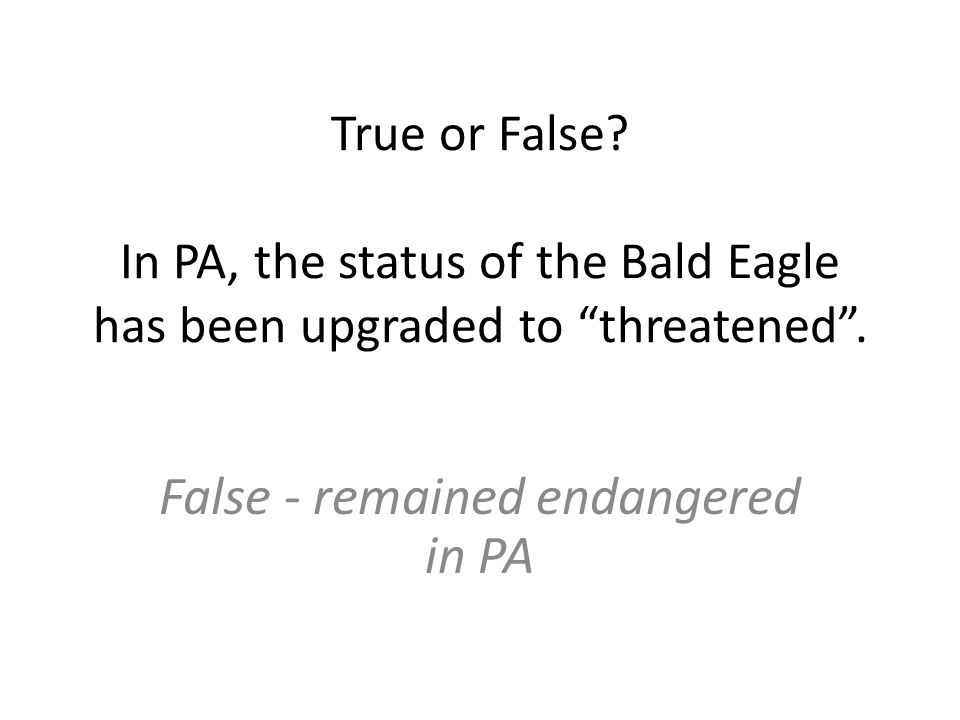 True or False. In PA, the status of the Bald Eagle has been upgraded to threatened .