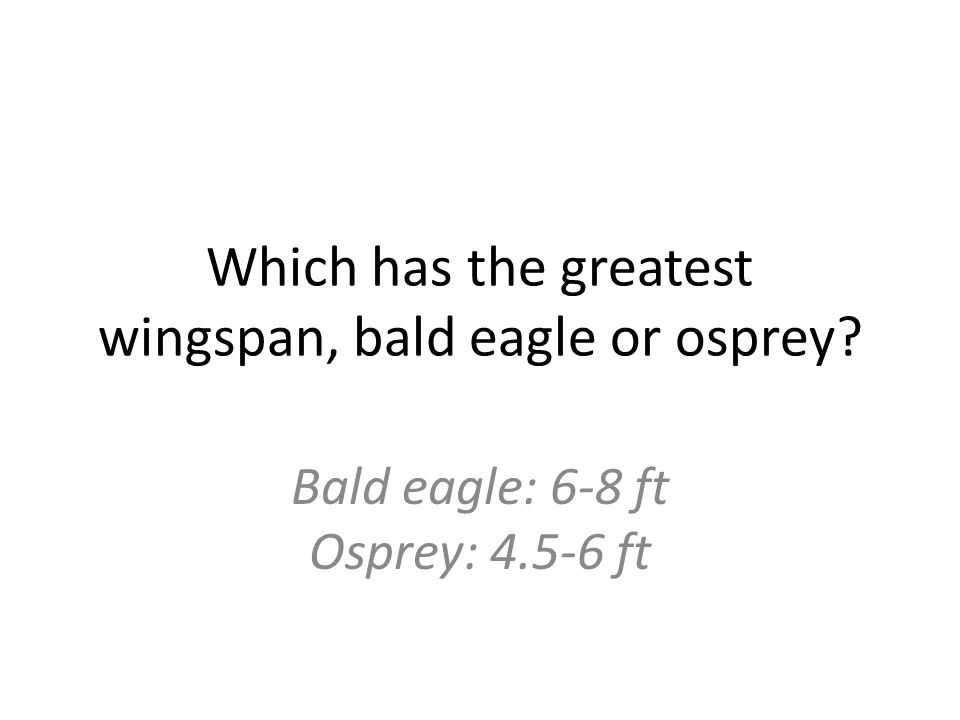 Which has the greatest wingspan, bald eagle or osprey Bald eagle: 6-8 ft Osprey: 4.5-6 ft