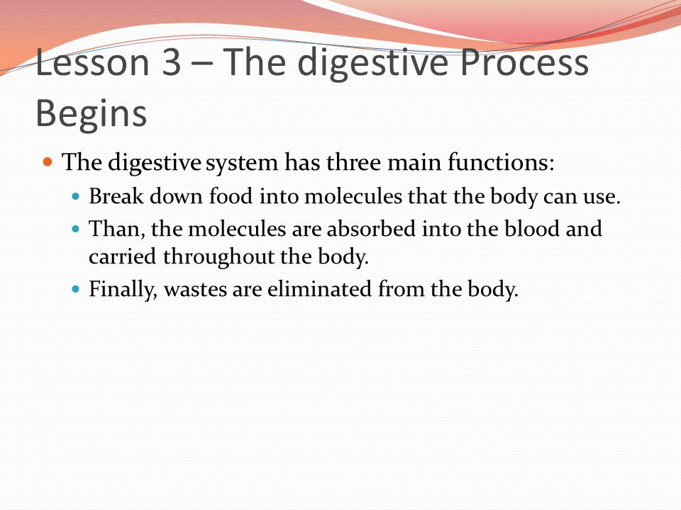 Lesson 3 – The digestive Process Begins The digestive system has three main functions: Break down food into molecules that the body can use. Than, the