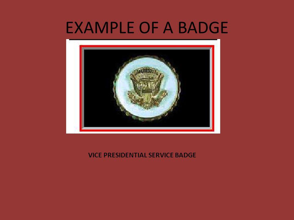 VISE PRESIDENTIAL SERVICE BADGE (1) Eligibility.