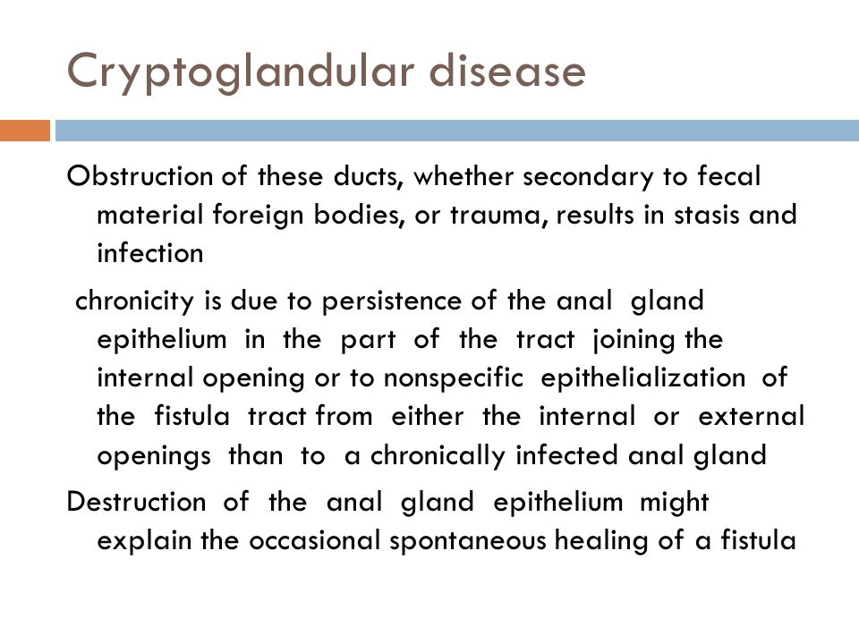 Cryptoglandular disease Obstruction of these ducts, whether secondary to fecal material foreign bodies, or trauma, results in stasis and infection chr