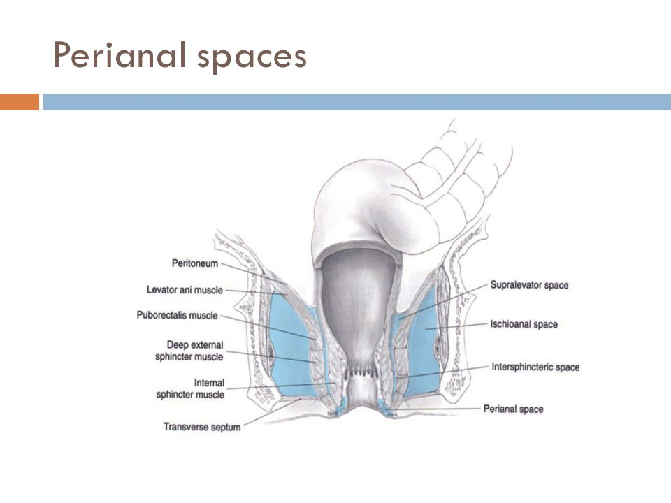 Perianal spaces