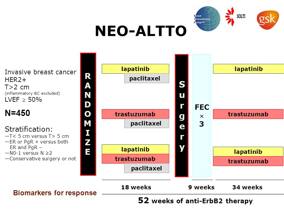 RANDOMIZERANDOMIZE NEO-ALTTO Stratification: —T 5 cm —ER or PgR + versus both ER and PgR – —N0-1 versus N ≥2 —Conservative surgery or not lapatinib trastuzumab lapatinib trastuzumab paclitaxel SurgerySurgery FEC  3 lapatinib trastuzumab lapatinib trastuzumab 18 weeks9 weeks34 weeks 52 weeks of anti-ErbB2 therapy Invasive breast cancer HER2+ T>2 cm (inflammatory BC excluded) LVEF  50% N=450 Biomarkers for response