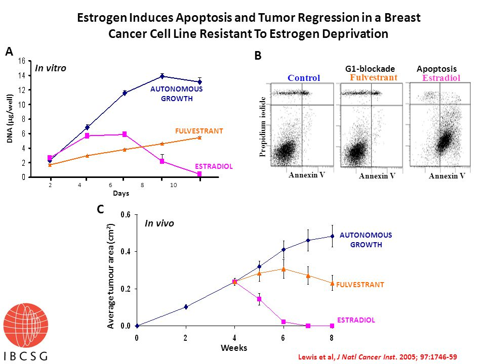 Propidium iodide Annexin V Control Fulvestrant Estradiol B Estrogen Induces Apoptosis and Tumor Regression in a Breast Cancer Cell Line Resistant To Estrogen Deprivation 2 4 6 8 10 AUTONOMOUS GROWTH ESTRADIOL FULVESTRANT A DNA (  g/well) Days G1-blockade Apoptosis Average tumour area (cm 2 ) Weeks AUTONOMOUS GROWTH FULVESTRANT ESTRADIOL C In vivo In vitro Lewis et al, J Natl Cancer Inst.