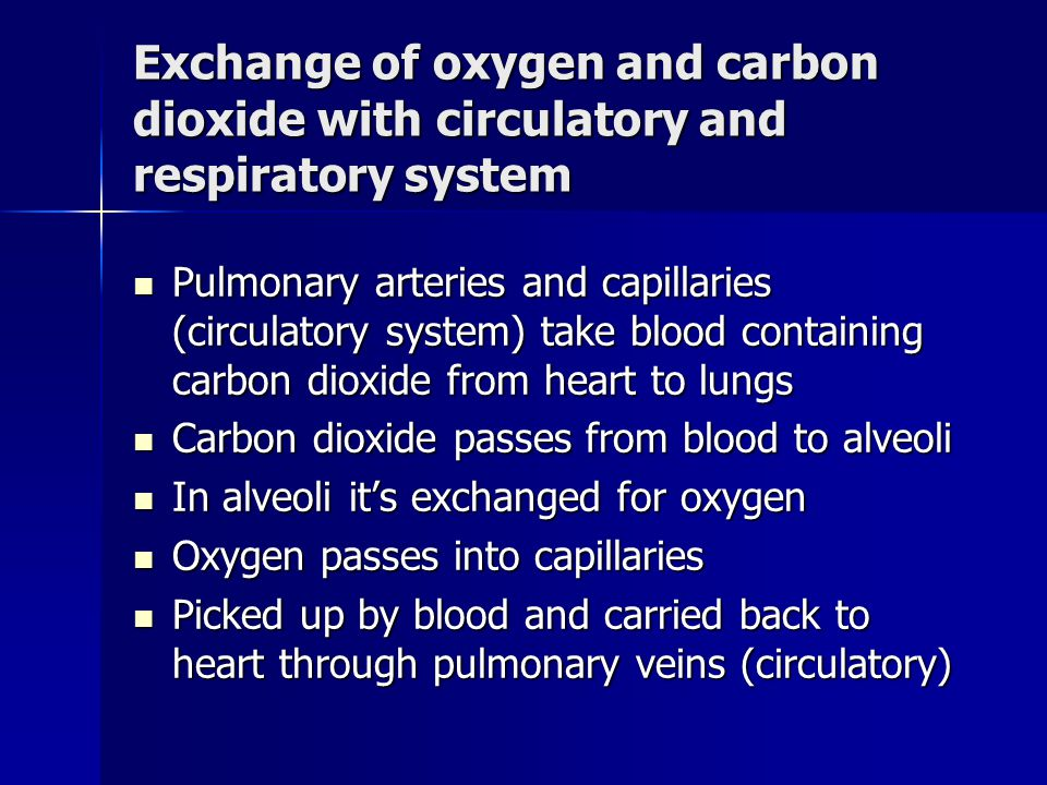 Lungs Consist of microscopic air sacs called alveoli Consist of microscopic air sacs called alveoli In alveoli carbon dioxide and oxygen is exchanged In alveoli carbon dioxide and oxygen is exchanged Oxygen goes into blood and carbon dioxide is taken away Oxygen goes into blood and carbon dioxide is taken away
