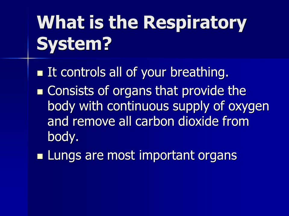 What is the Respiratory System.It controls all of your breathing.