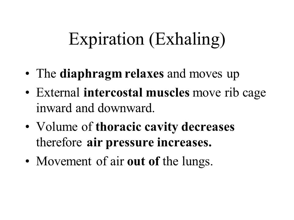 Expiration (Exhaling) The diaphragm relaxes and moves up External intercostal muscles move rib cage inward and downward. Volume of thoracic cavity dec