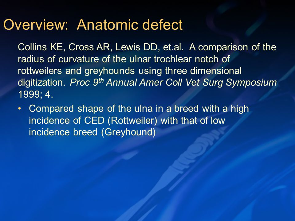 Compared shape of the ulna in a breed with a high incidence of CED (Rottweiler) with that of low incidence breed (Greyhound) Overview: Anatomic defect Collins KE, Cross AR, Lewis DD, et.al.
