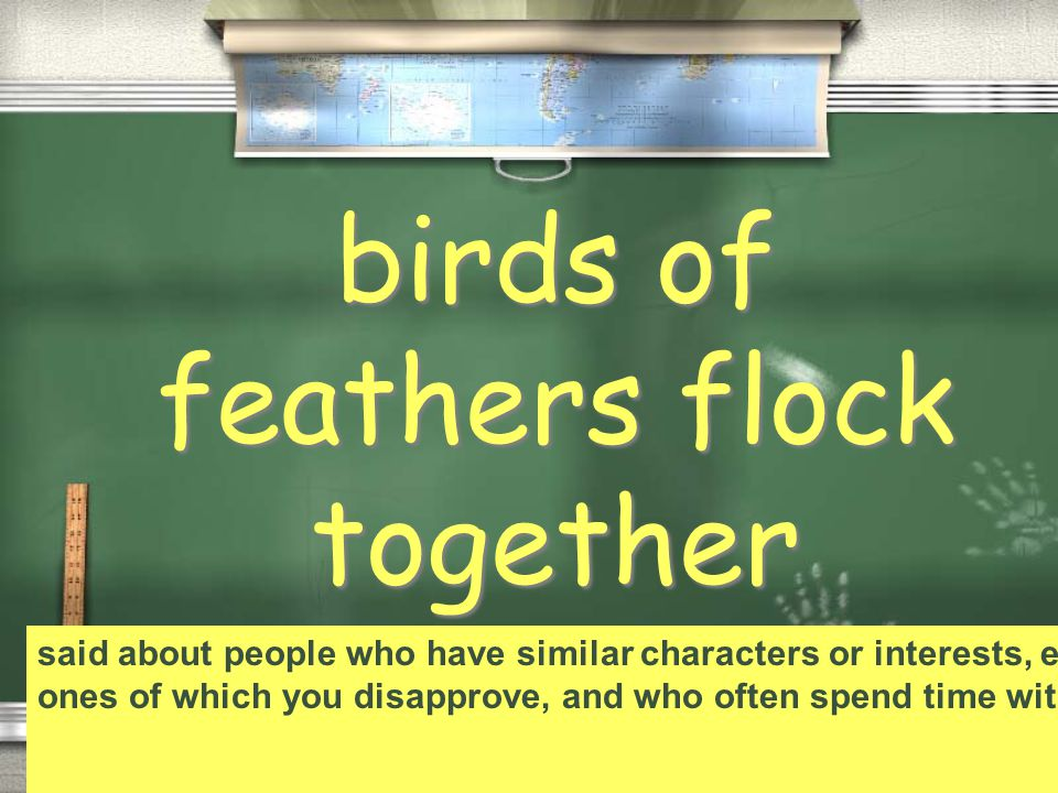 birds of feathers flock together said about people who have similar characters or interests, especially ones of which you disapprove, and who often spend time with each other