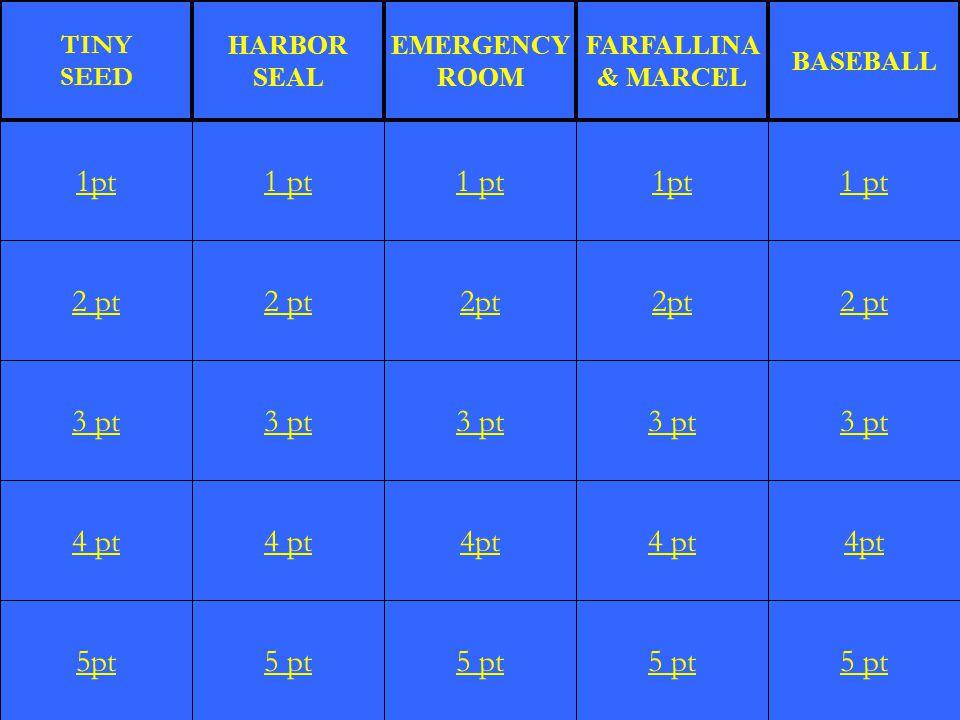 2 pt 3 pt 4 pt 5pt 1 pt 2 pt 3 pt 4 pt 5 pt 1 pt 2pt 3 pt 4pt 5 pt 1pt 2pt 3 pt 4 pt 5 pt 1 pt 2 pt 3 pt 4pt 5 pt 1pt TINY SEED HARBOR SEAL EMERGENCY ROOM FARFALLINA & MARCEL BASEBALL