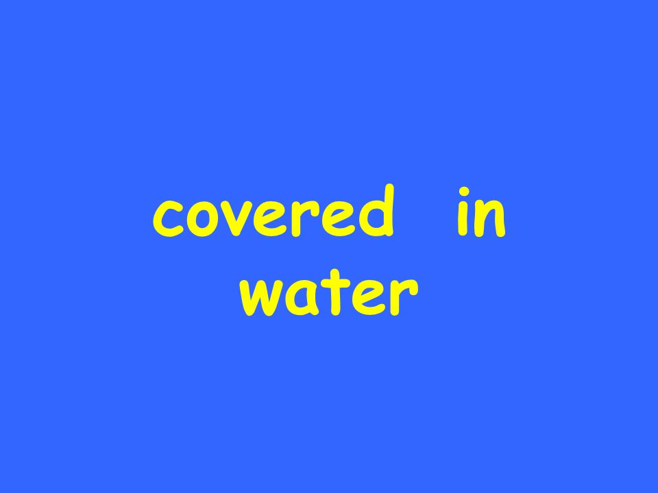 covered in water