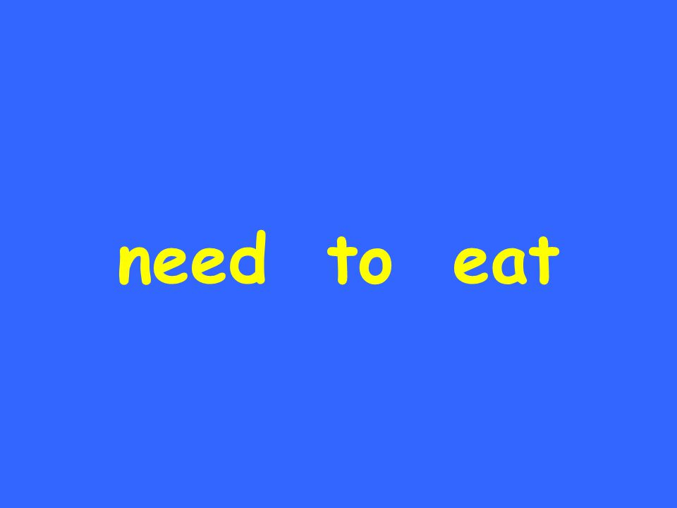 need to eat
