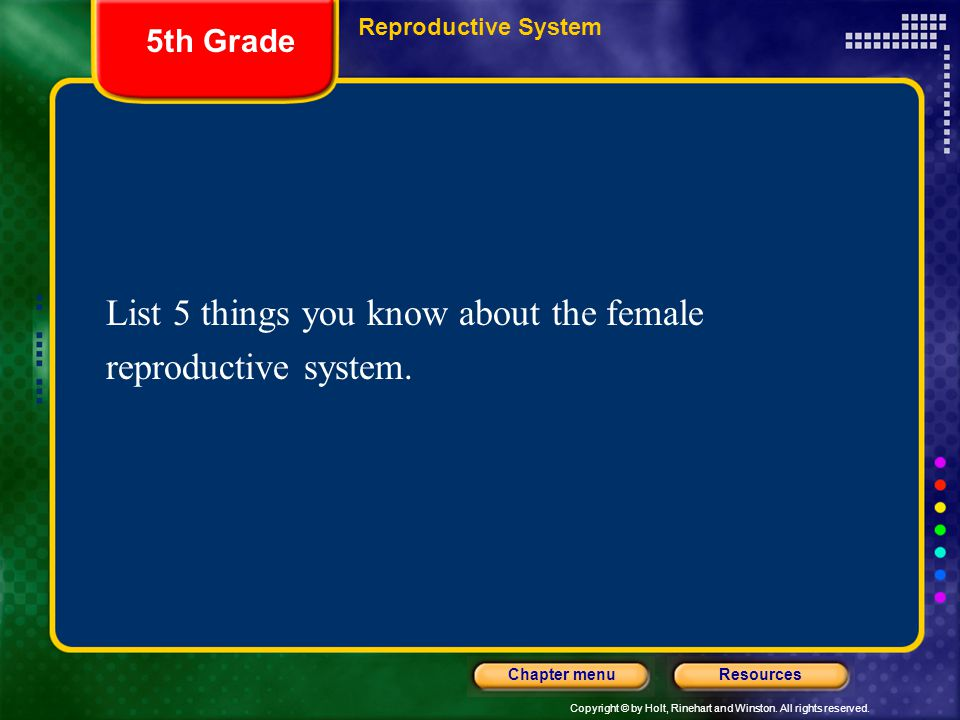 Copyright © by Holt, Rinehart and Winston. All rights reserved. ResourcesChapter menu List 5 things you know about the female reproductive system. 5th