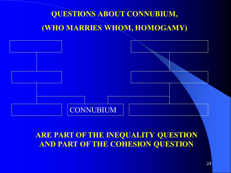 25 ARE PART OF THE INEQUALITY QUESTION AND PART OF THE COHESION QUESTION CONNUBIUM QUESTIONS ABOUT CONNUBIUM, (WHO MARRIES WHOM, HOMOGAMY)
